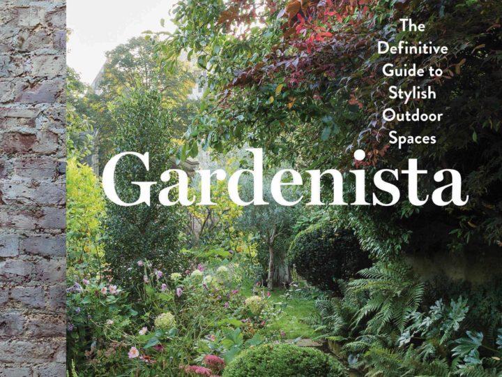 Dröm om en trädgård