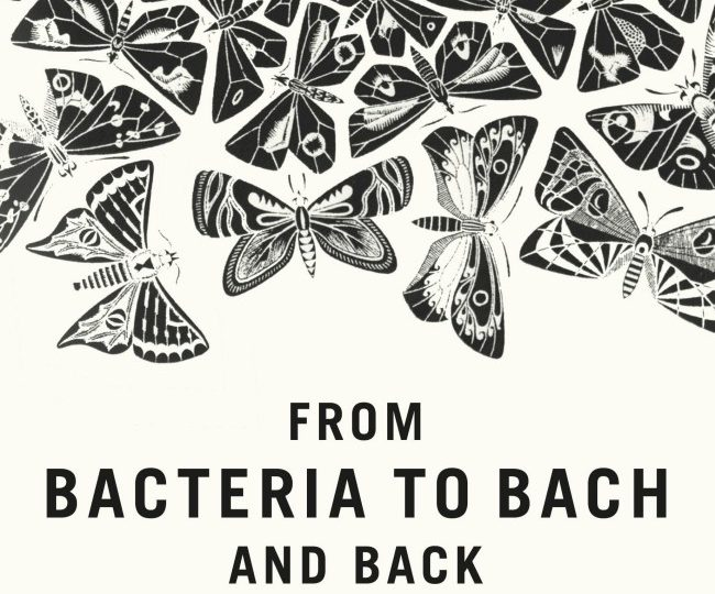 From Bacteria to Bach and Back…
