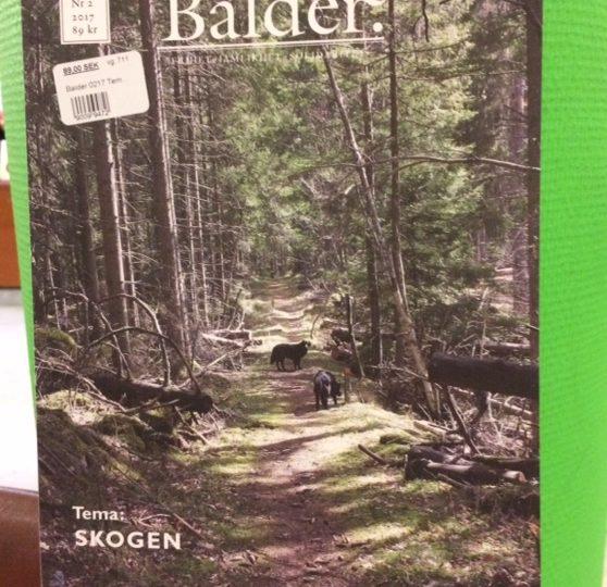 Nytt nr av tidskriften Balder, med tema SKOGEN