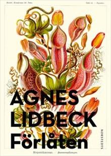 Agnes Lidbeck: Förlåten