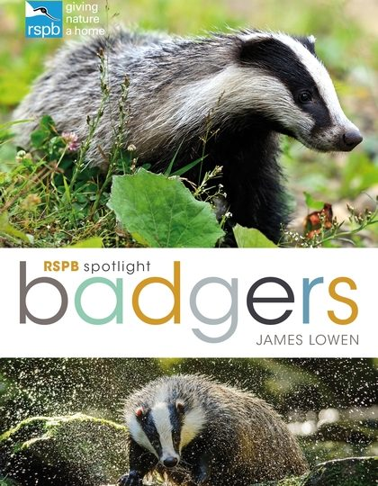 James Lowen: Badgers