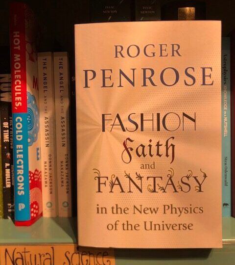 Fashion, Faith, and Fantasy in the New Physics of the Universe, av Roger Penrose